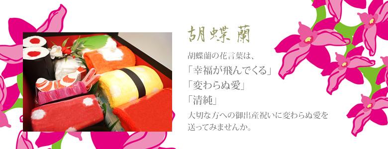 胡蝶蘭の花言葉